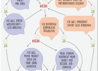 Infografik Matura - was nun?